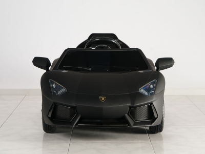 Lamborghini Aventador  ( Electric Car )